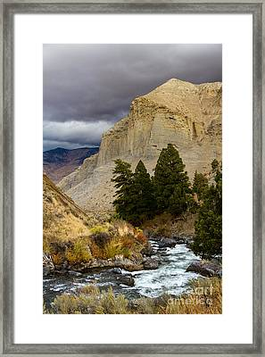 Yellowstone's Beauty Framed Print
