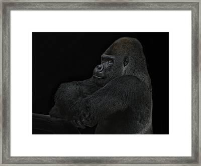 yes I m the great pretender Framed Print by Joachim G Pinkawa