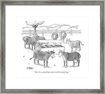 Yes It's A Salad Bar Framed Print