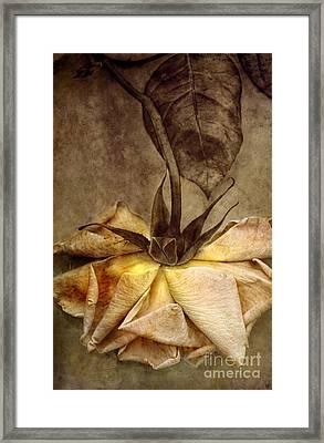 Yesterday Framed Print by Elena Nosyreva