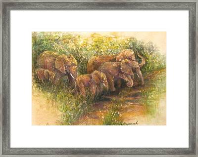 Yielding To Elephants Framed Print by Ursula Brozovich