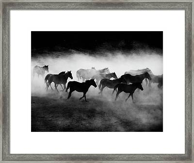 Yilki Framed Print