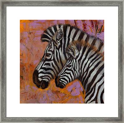 Yipes Stripes Framed Print