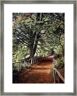 Yockletts Bank Framed Print by Rosemary Colyer
