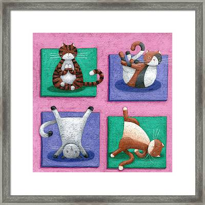 Yoga For Cats Framed Print by Peter Adderley