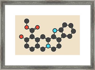 Yohimbine Alkaloid Molecule Framed Print