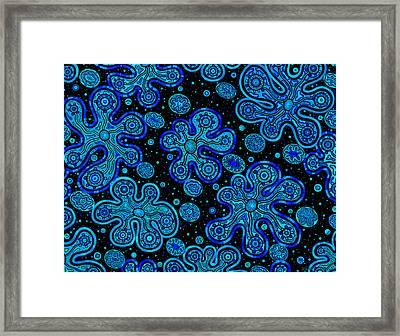Yorbis Blue Framed Print by Dave Migliore