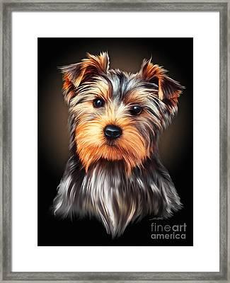 Yorkie Portrait By Spano Framed Print by Michael Spano