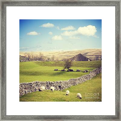 Yorkshire Dales With Dry Stone Wall Framed Print