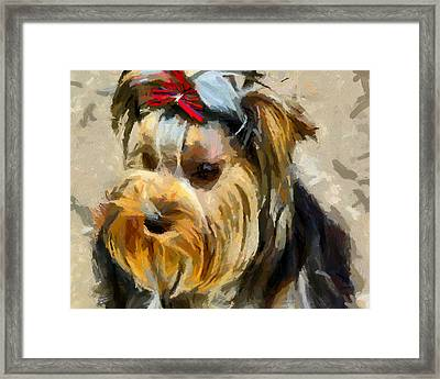Framed Print featuring the painting Yorkshire Terrier by Georgi Dimitrov