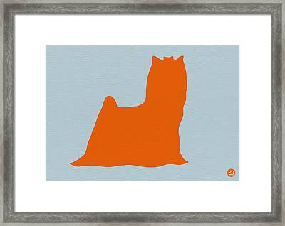 Yorkshire Terrier Orange Framed Print by Naxart Studio