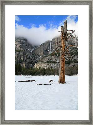 Yosemite In The Dead Of Winter Framed Print by Patricia Sanders