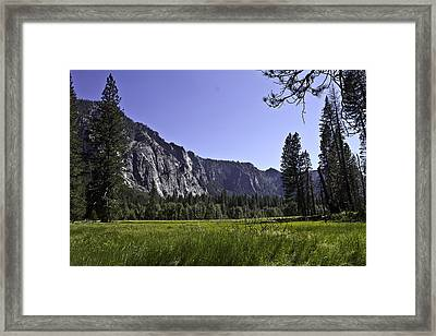 Yosemite Meadow Framed Print