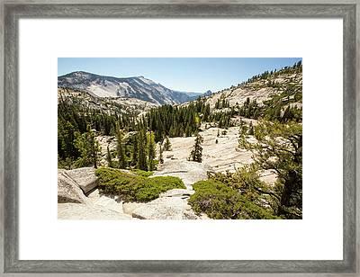 Yosemite National Park Framed Print by Ashley Cooper