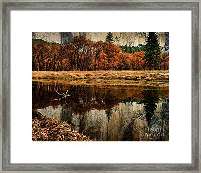 Yosemite Reflections Framed Print by Terry Garvin