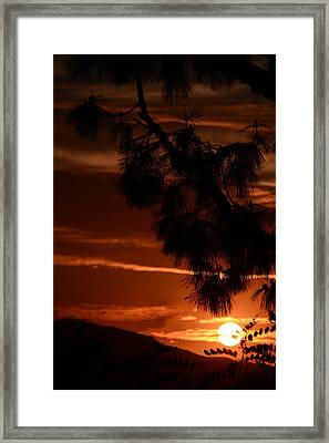 Yosemite  Sunset Framed Print by Renee Anderson