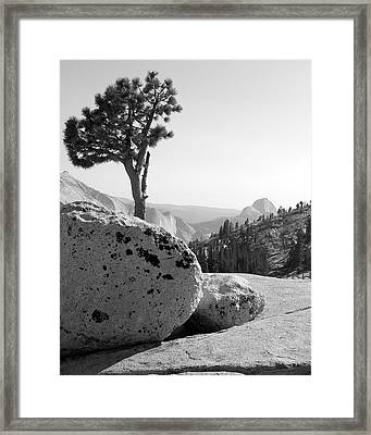 Yosemite's Olmsted Point Framed Print