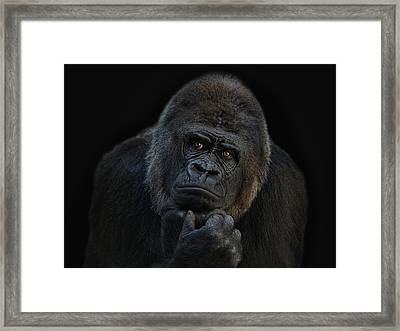 You Ain T Seen Nothing Yet Framed Print by Joachim G Pinkawa