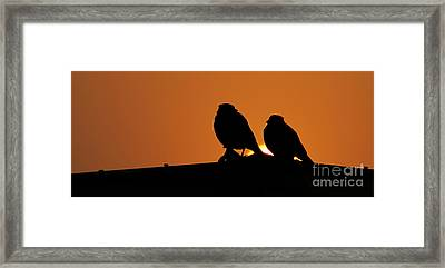 You And Me Framed Print by Vineesh Edakkara