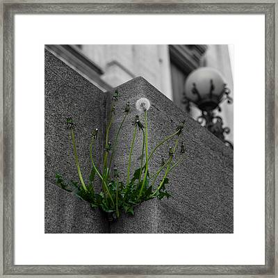 You Are Exactly Where You Are Supposed To Be Framed Print