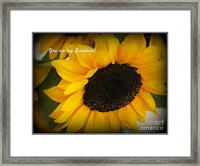 You Are My Sunshine - Greeting Card Framed Print by Dora Sofia Caputo Photographic Art and Design