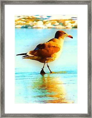 You Are The Only Gull For Me Framed Print by Brian D Meredith