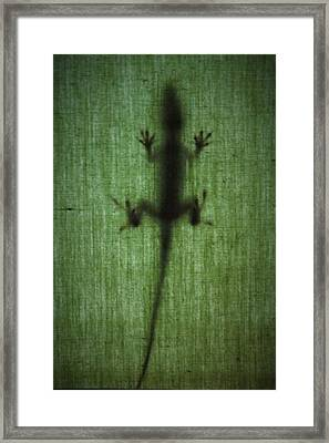 You Cannot See Me Framed Print