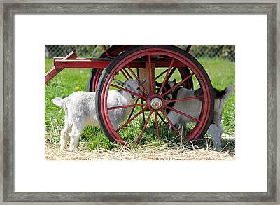 Framed Print featuring the photograph You Can't See Me by E Faithe Lester