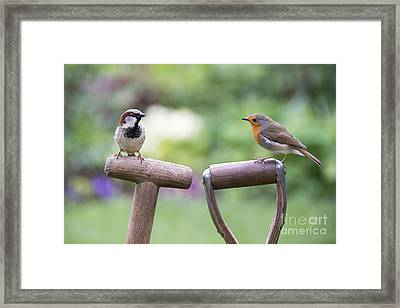 You Gotta Friend  Framed Print