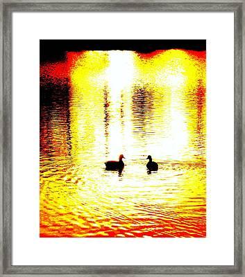 You Light Up My Life, We Shall Swim Together Forever   Framed Print