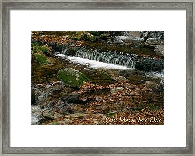 You Made My Day - Stream Framed Print by Dawn Currie