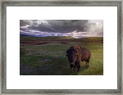 You May Not Pass Framed Print