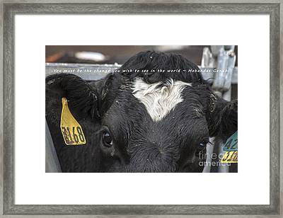 You Must Be The Change Framed Print by Janice Rae Pariza