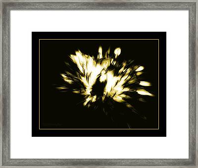 You Shine II Framed Print by Mimulux patricia no No