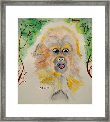 You Silly Monkey Framed Print by Maria Urso