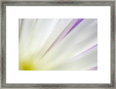 You Smiled...  And The Sun Came Out Framed Print