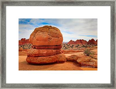 You Want Fries With That? Framed Print by Inge Johnsson