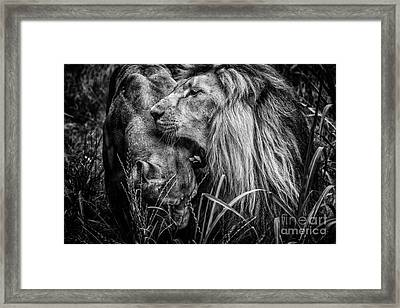 You Will Be Queen Framed Print by Traven Milovich