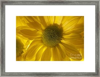 You'll Always Be Inside Of Me Like A Flower You Grow Framed Print by  Andrzej Goszcz
