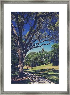 You'll Know It's True Framed Print by Laurie Search