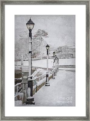 You'll Never Walk Alone Framed Print by Evelina Kremsdorf