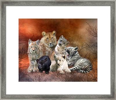Young And Wild Framed Print by Carol Cavalaris