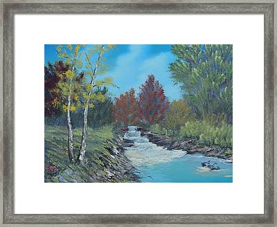 Young Cascades Framed Print