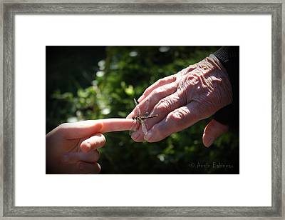 Young Dragonfly Whisperer Framed Print by Anne Babineau