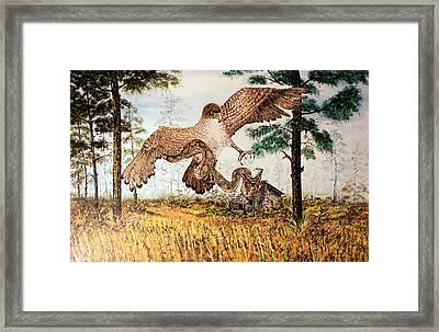 Young Eagle Hunts Framed Print