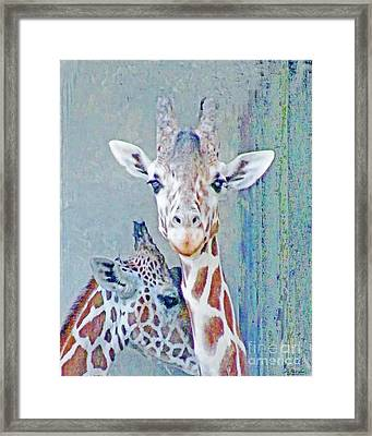 Young Giraffes Framed Print