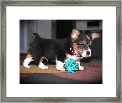 Young Otis Ray 2 Framed Print by Mike McGlothlen