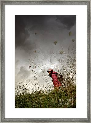 Young Walker Framed Print by Carlos Caetano