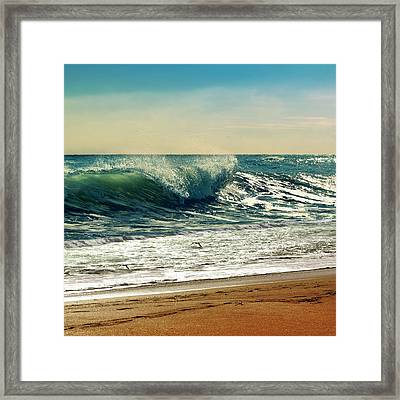 Your Moment Of Perfection Framed Print by Laura Fasulo