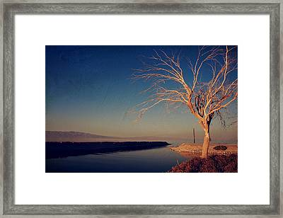 Your One And Only Framed Print by Laurie Search